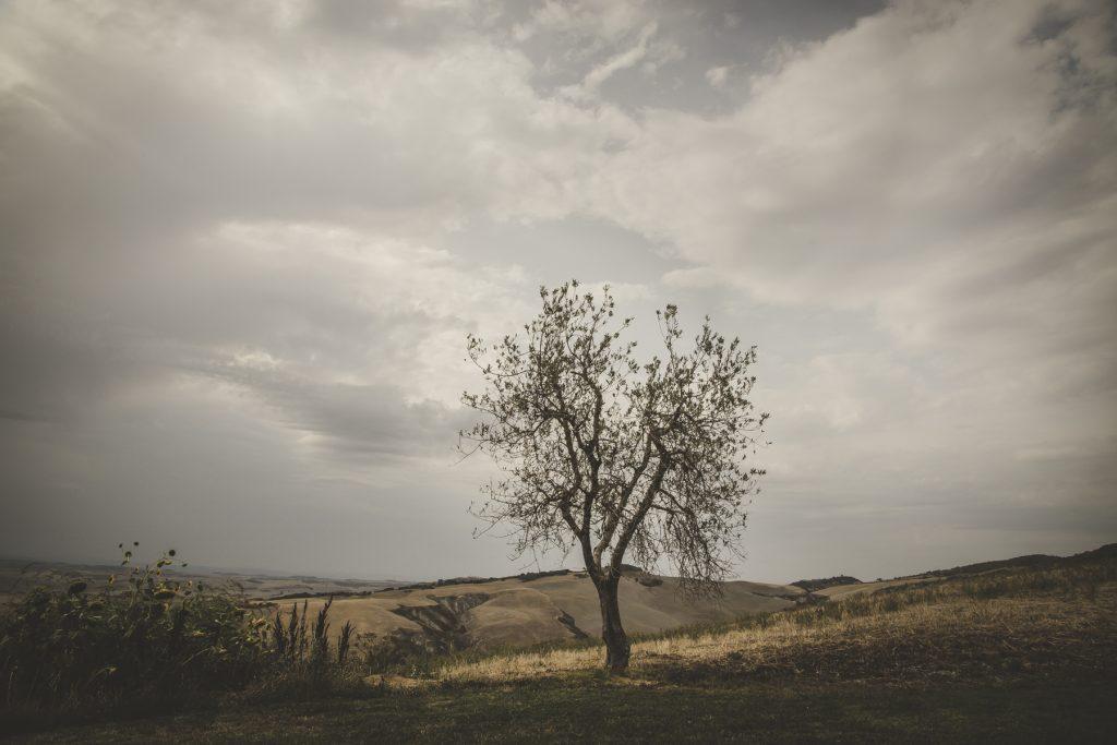 tuscan countryside photo shoot
